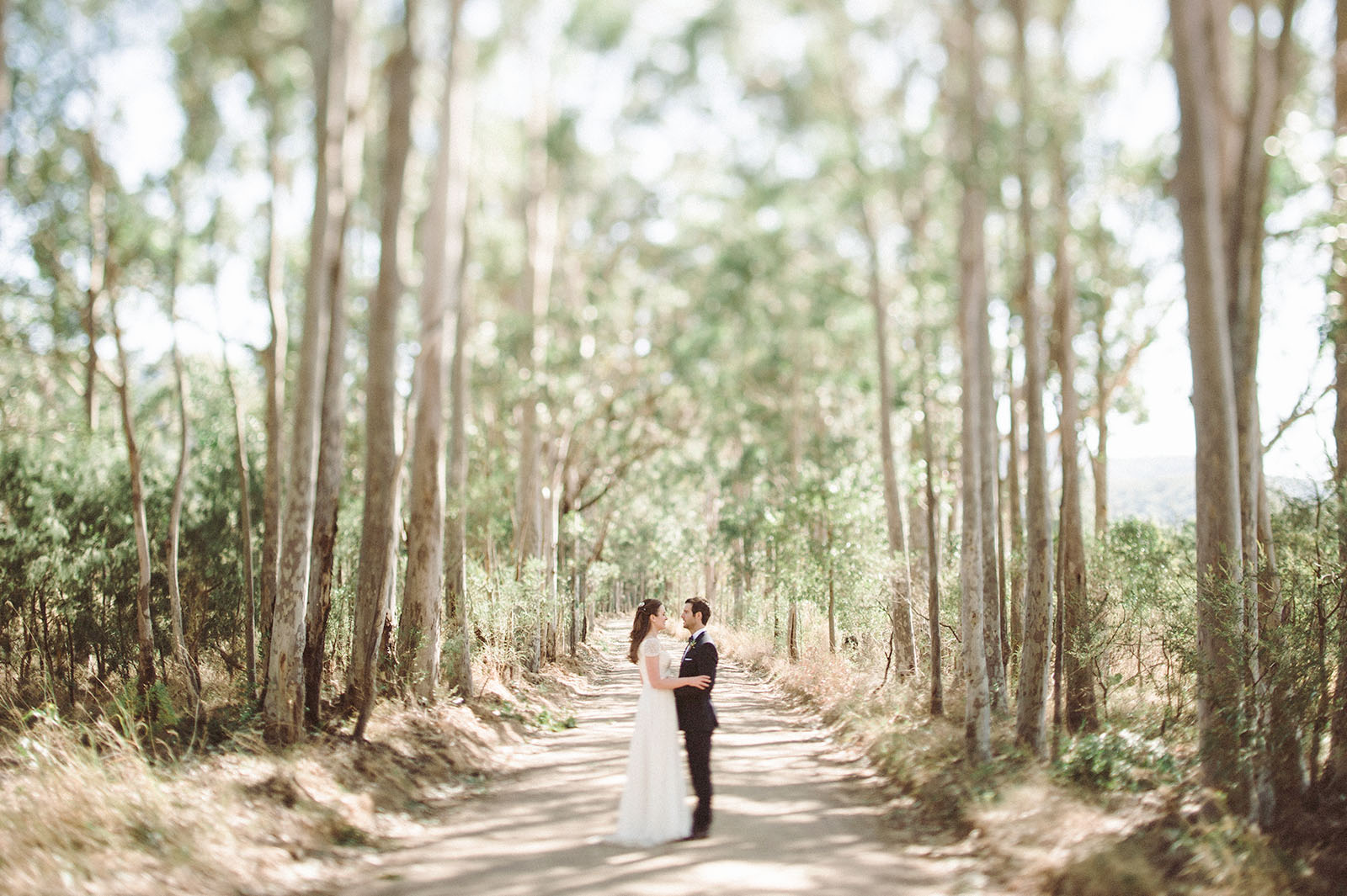 tilt shift wedding photograph
