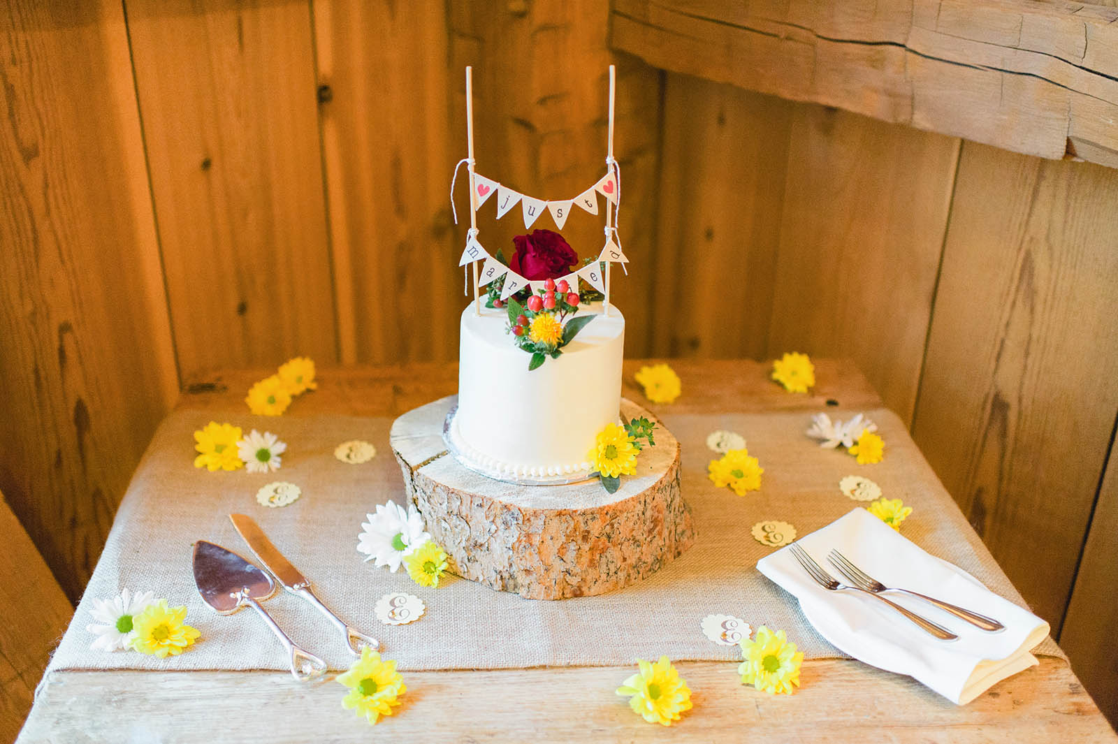 colorado wedding cake photo