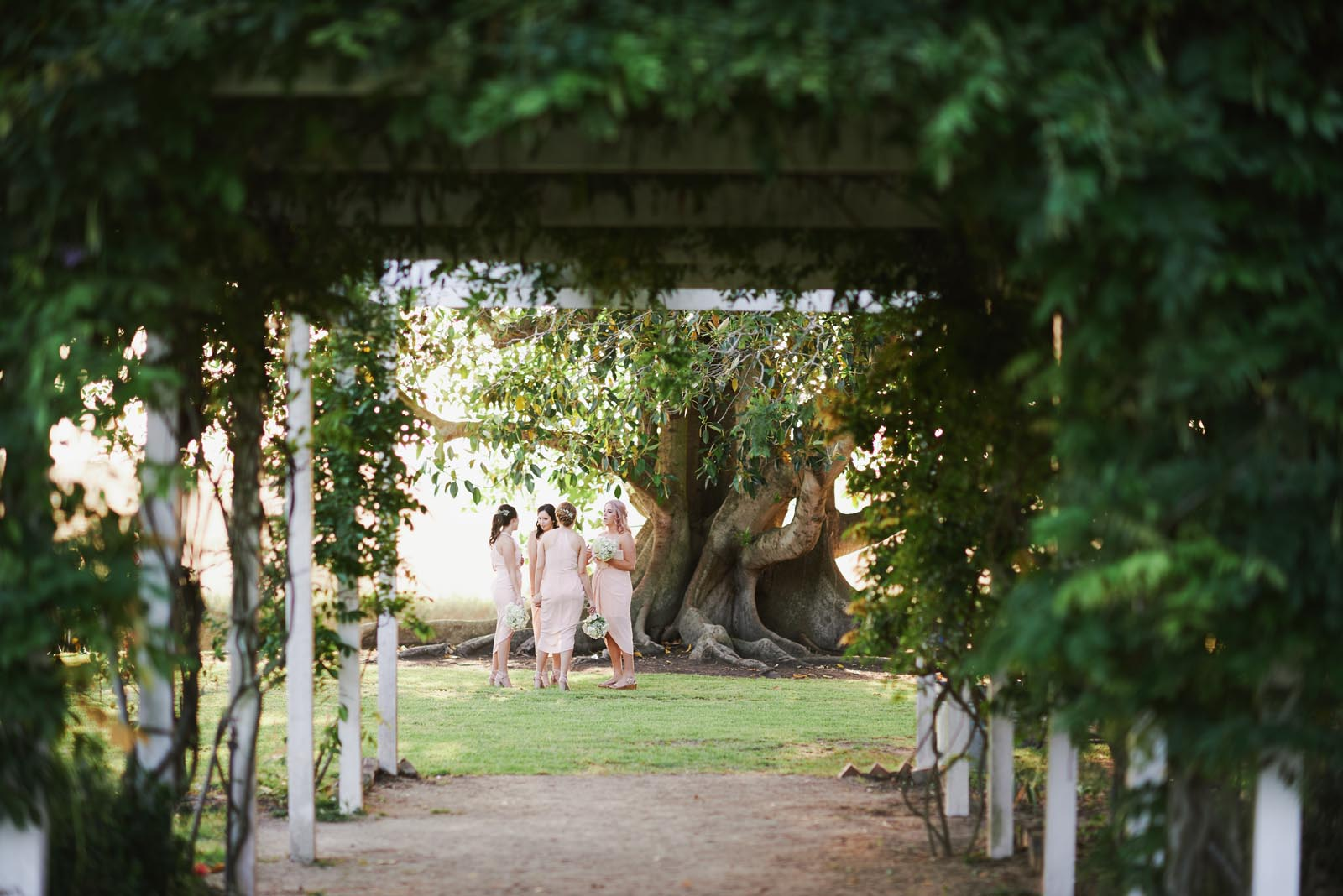 Wedding photographer newcastle hunter valley